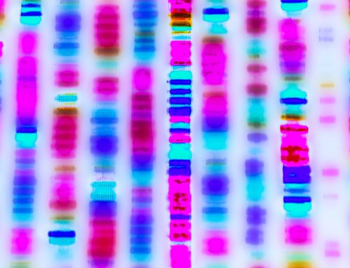 DNA Testing of Immigrants Is Unethical